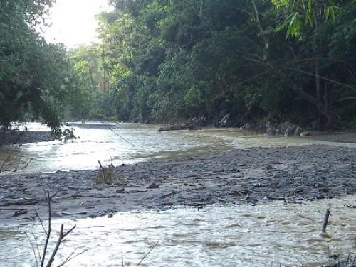 Kana River at Sajik-Tampak near Molnaum village, Chandel district of Manipur for the type-locality and natural habitat of <em>Opsarius sajikensis </em>sp. nov.