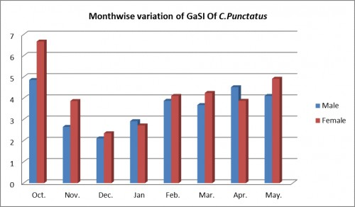 Monthwise variations of gastro-somatic index (GaSI) of <em>Channa punctatus</em>