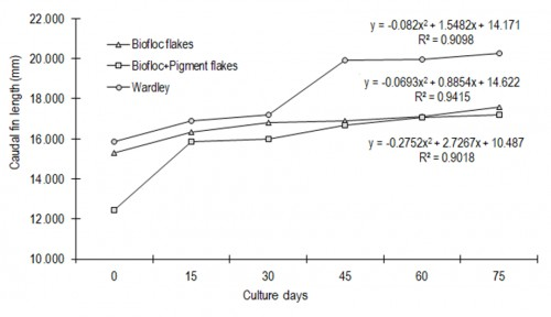 Grow tendency curve of caudal fin length of fishes with three experimental diets.