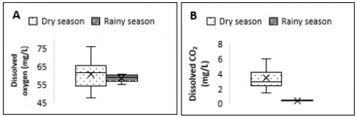 Boxplots showing the seasonal distribution of dissolved oxygen (A) and dissolved carbon dioxide (B) in the wells studied in Tiko