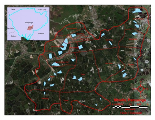 The blue polygons are tilapia grow-out ponds that served as collection sites of juvenile Nile tilapia