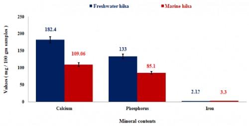 Minerals composition of freshwater and marine hilsa, <em>Tenualosa ilisha</em>