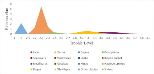 The distribution of species biomass across the trophic levels