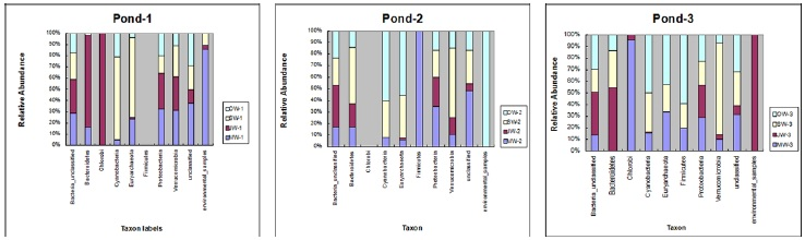 Phylum Distribution Bar graphs for monthly sampled microbial communities in Ponds 1, 2 and 3 of Yi Xing city, China