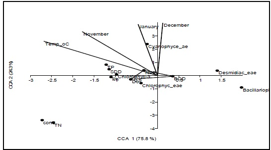 Canonical correspondence for the phytoplankton cells and the physico-chemical variables